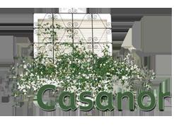 Apartamentos Casanor