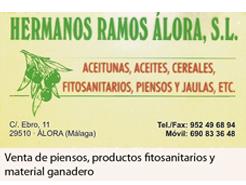 Hermanos Ramos