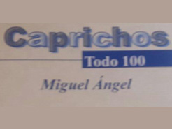 Todo Cien Miguel Angel Caprichos