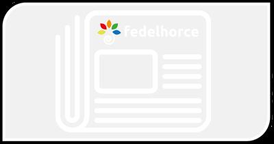 Newsletter de Fedelhorce