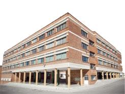 Colegio Los Olivos
