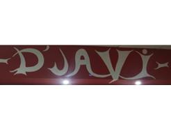 D' Javi