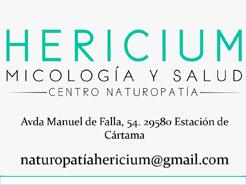 Hericium