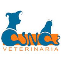 Clínica Veterinaria Ana Morales Loriguillo